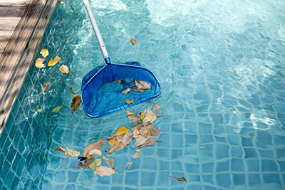 What to do Between Professional Pool Cleaning Services