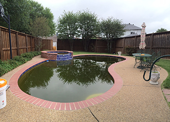 image of flower beds washed into pool from heavy rain