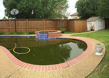 another image of flower beds washed into pool from heavy rain
